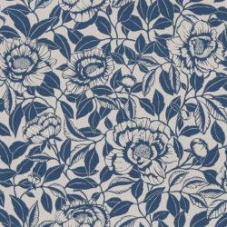 My peony garden China Blue