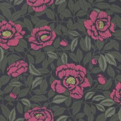 My peony garden Peony Pink